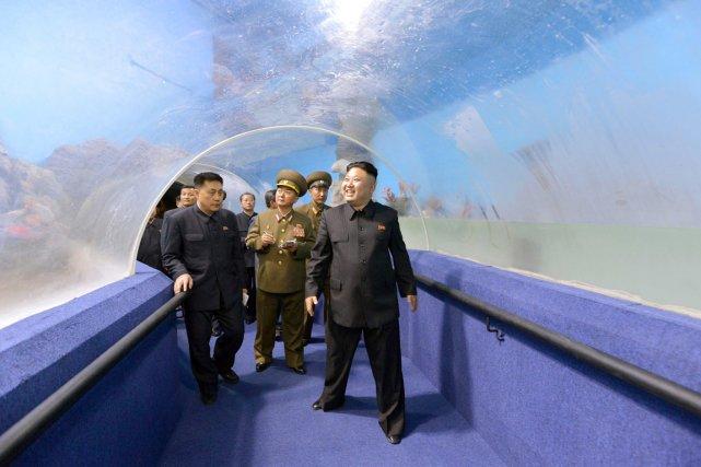 Accompagné d'une délégation, Kim Jong-un inspecte un aquarium... (PHOTO ARCHIVES AFP/KCNA)