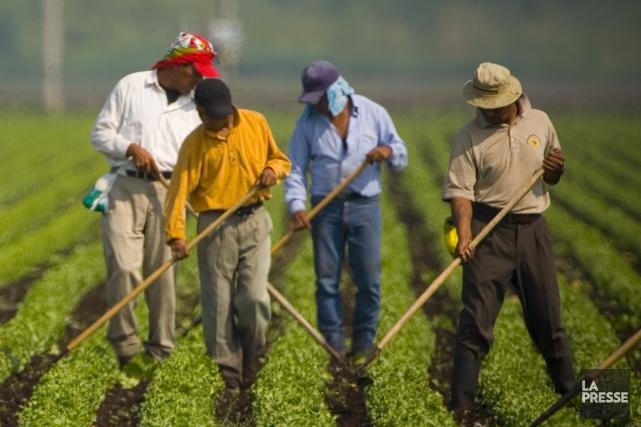 Selon des organisations syndicales, les employeurs profitent du... (PHOTO: ANDRÉ PICHETTE, ARCHIVES LA PRESSE)