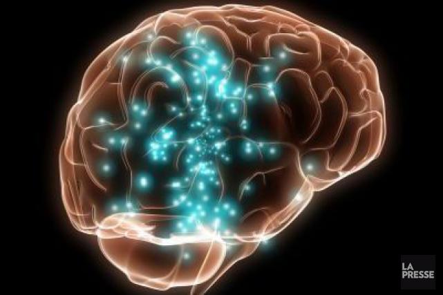 Le cerveau continue à réagir à des sons et tonalités d'une langue entendue et... (Photothèque La Presse)