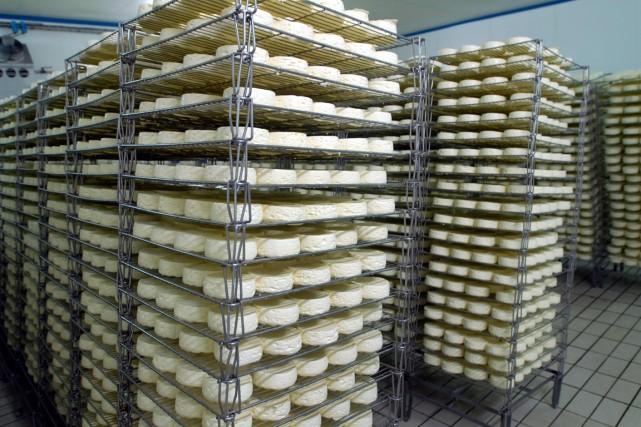 Des fromages Camembert de la coopérative Isigny Sainte-Mère,... (PHOTO ALASTAIR MILLER, ARCHIVES BLOOMBERG)
