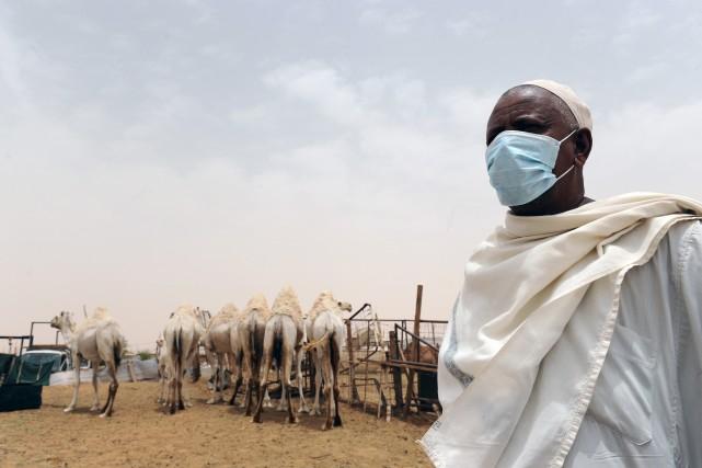 Le virus est apparu en Arabie saoudite en... (Photo FAYEZ NURELDINE, AFP)