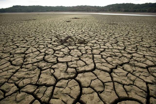 Les agriculteurs de Californie vont perdre 1,7 milliard de dollars cette année... (Photo: Reuters)