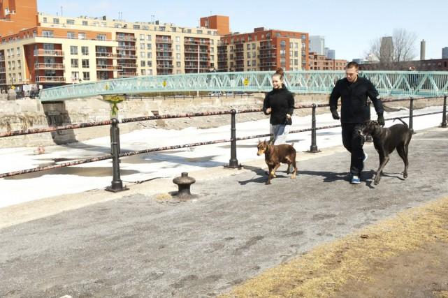 Les gens qui font appel à The Dog... (Photo fournie par the Dog Runners)