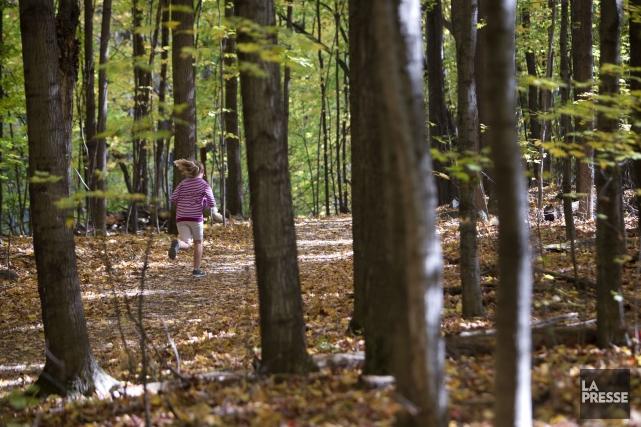 L'un des nombreux parcs de Saint-Bruno.... (Photo Robert Skinner, archives La Presse)