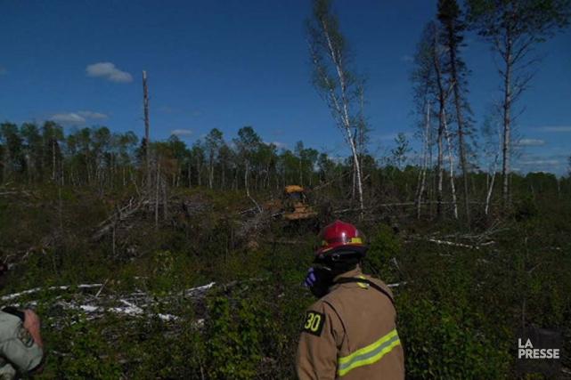 Un travailleur forestier perd la vie en haute mauricie for Haute zone gatineau