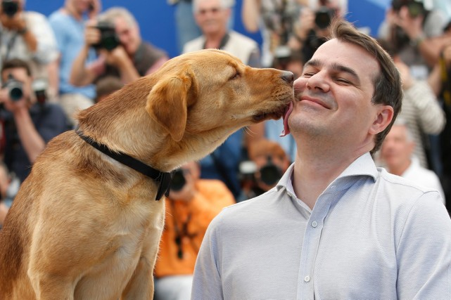 Cette année à Cannes, la Palm Dog a... (PHOTO ALASTAIR GRANT, AP)