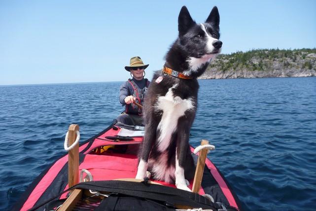 Pierre Pépin et sa chienne Jasmine pendant l'expédition... (Photo Jennifer Gosselin, Wildravenadventure.com)