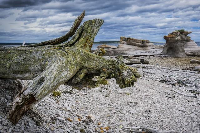 Les paysages nus et érodés se succèdent lors... (Collaboration spéciale, Pierre-Olivier Fortin)