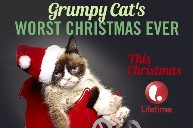 Le film, intitulé Grumpy Cat's Worst Christmas Ever («le pire... (Photo AP/Lifetime)