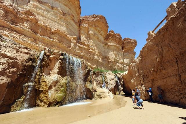 Des touristes prennent des photos d'une oasis à... (Photo FETHI BELAID, AFP)