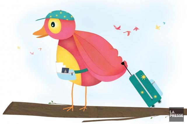 Séjours linguistiques, visite de la famille, échanges sportifs, de nombreux... (Illustration Annie-Claude Beaudoin, La Presse)