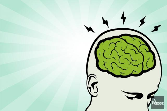 L'intelligence de l'homme est moins liée à la taille de son cerveau qu'à la... (ILLUSTRATION ARCHIVES LA PRESSE)