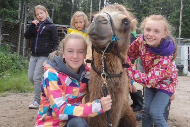 Des jeunes pourront découvrir le Zoo de Saint-Félicien... ((Courtoisie))