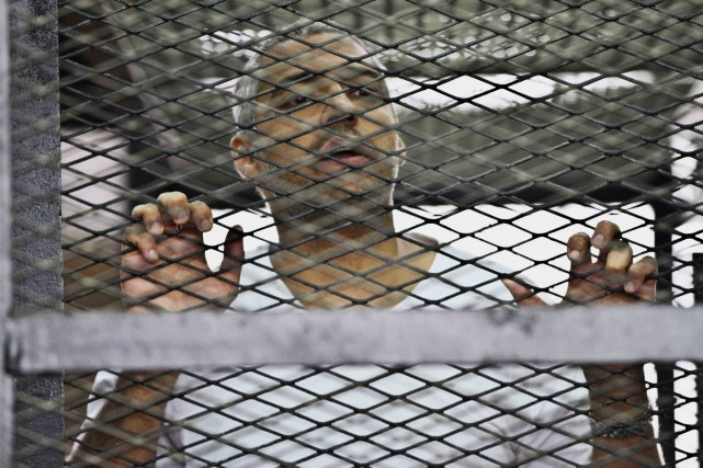 La justice égyptienne reproche au journaliste canado-égyptien, Mohamed Fahmy... (PHOTO HAMADA ELRASAM, ARCHIVES AP)