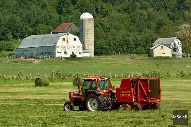 Les auteurs du rapport suggèrent aux agriculteurs de... (Photo Jean-Marie Villeneuve, archives Le Soleil)