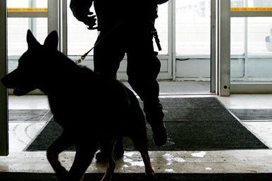 Un maître-chien a été mis à contribution pour... (Archives PC)