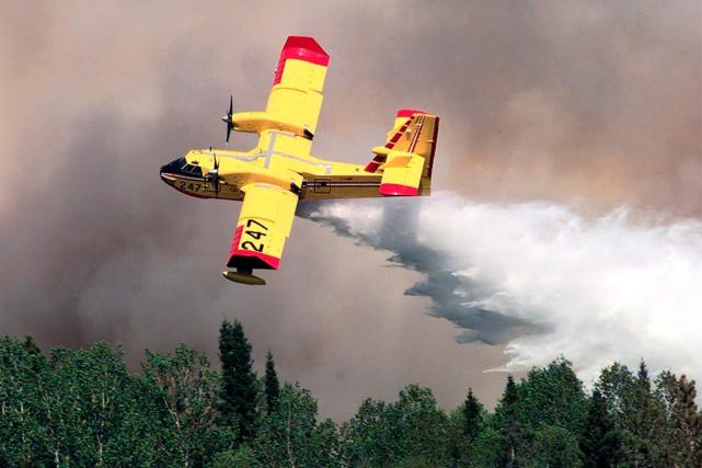 Le risque d'incendie de forêt est extrême dans... (Photo archives La Presse Canadienne)