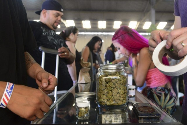 En Californie, seule l'utilisation thérapeutique du cannabis est... (PHOTO FREDERIC J. BROWN, AFP)