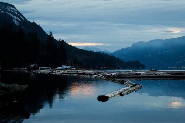 Les groupes environnementaux souhaitent obtenir une ordonnance de... (Photo Darryl Dyck, Archives PC)