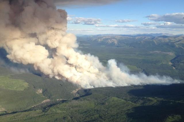 Il y a présentement 45 foyers d'incendie à... (Photo La Presse Canadienne)