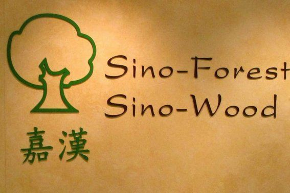 L'ancien directeur des finances de Sino-Forest,David Horsley, est...