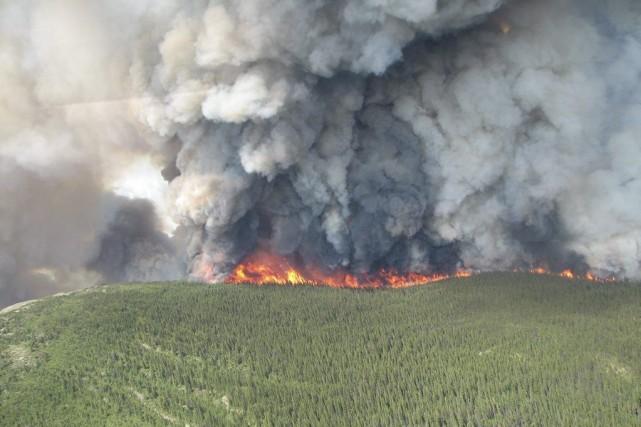 L'incendie sur le mont McAllister a été causé... (PHOTO LA PRESSE CANADIENNE)