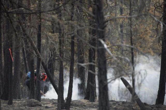 Un pompier à Smith Creek.... (PHOTO JONATHAN HAYWARD, PC)