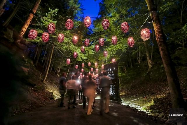 Le Parc de la Gorge de Coaticook est l'heureuse victime du l'immense succès de... (Imacom, Jocelyn Riendeau)