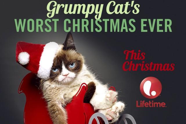 Grumpy Cat est l'une des vidéos les plus... (PHOTO ASSOCIATED PRESS)
