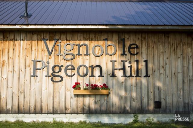 Le vignoble de Pigeon Hill passe presque inaperçu dans le paysage verdoyant de... (Photo Simon Giroux, La Presse)