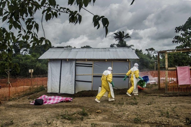 Aucun vaccin ou traitement contre l'Ebola n'a été... (Photo The New York Times)