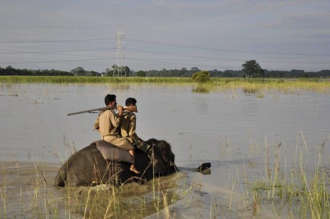 Des gardes forestiers indiens effectuent une patrouille à... (PHOTO BIJU BORO, AFP)
