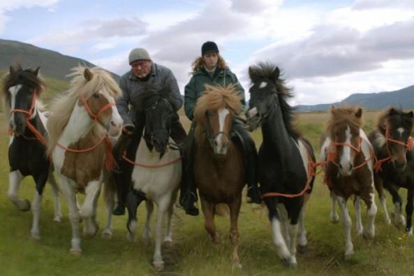 Des chevaux et des hommes... (Photo: fournie par le FFM)