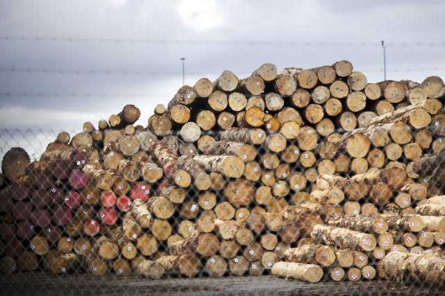 Eh bien! Je crois que les travailleurs forestiers... (Photo d'archives)