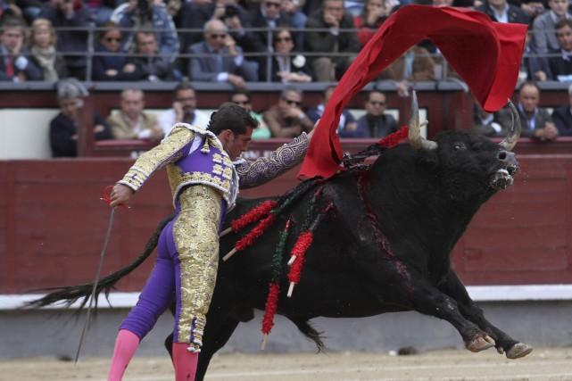 Véritable tradition espagnole, la corrida divise aujourd'hui le... (Photo Archives AFP)