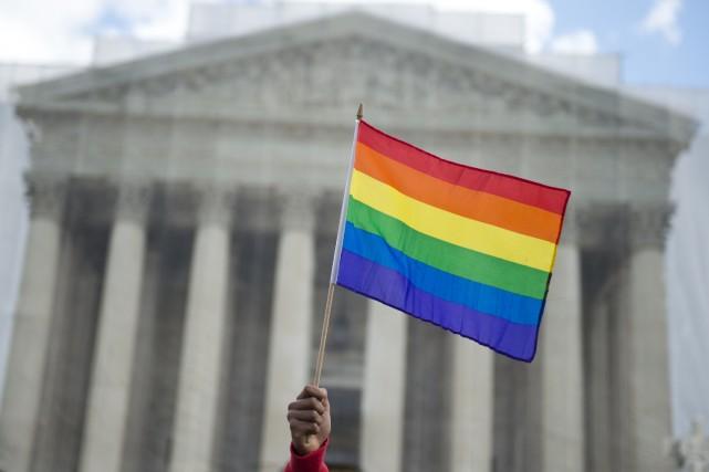 Un militant pour les droits des homosexuels agite... (Photo Saul LOEB, archives AFP)