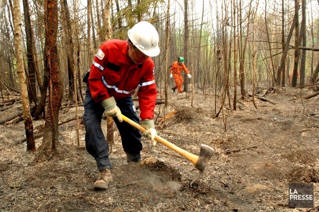 Depuis le 1er août, 15 feux de forêt... (Photo David Boily, archives La Presse)