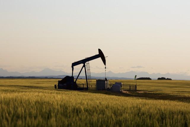 Les prix du pétrole ont nettement avancé vendredi à New York, dans un marché... (Photo archives Reuters)