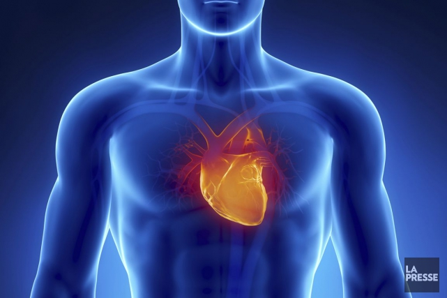 L'Institut précise que l'insuffisance cardiaque est à l'origine... (PHOTOTHÈQUE LA PRESSE)