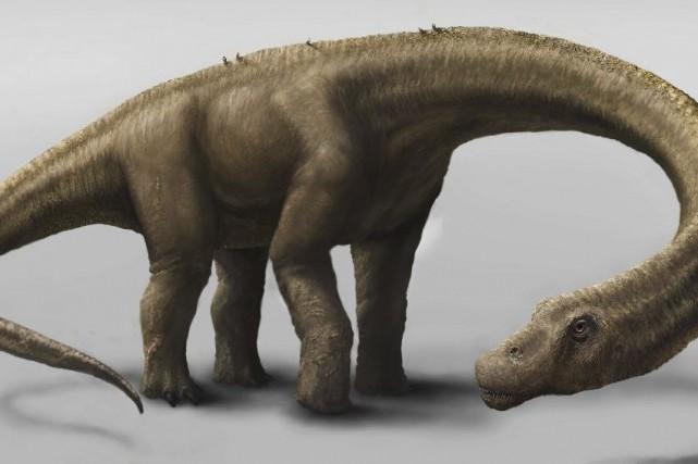 Une représentation duDreadnoughtus schrani.... (PHOTO MARK A. KLINGER, AGENCE FRANCE-PRESSE)