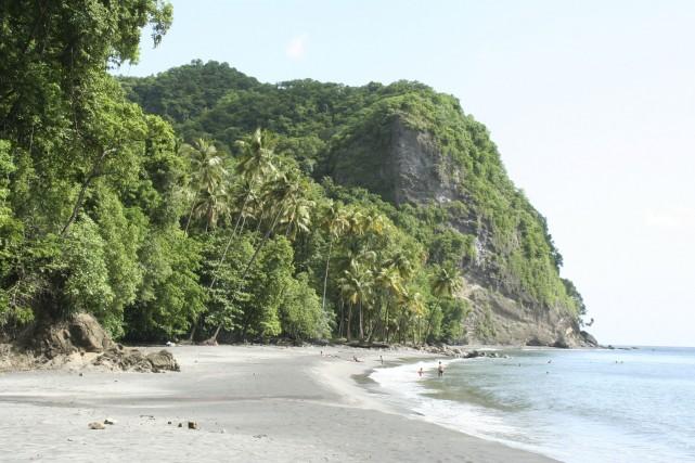 Martinique gourmande, c'est l'occasion de s'offrir une tranche... (Photo Digital/Thinkstock)