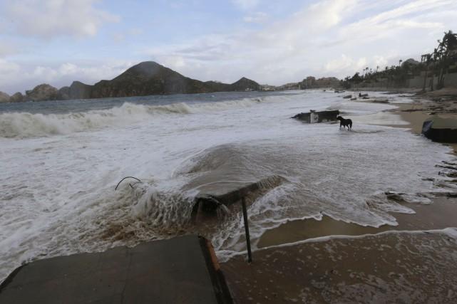 Quatre personnes sont mortes après le passage de l'ouragan Odile sur...