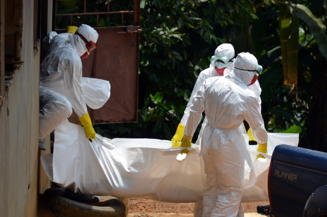 L'épidémie actuelle, qui s'est déclarée en début d'année... (Photo ZOOM DOSSO, AFP)