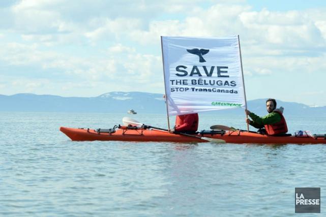 Les écologistes demandaient une suspension des travaux jusqu'au... (Photo: PC)
