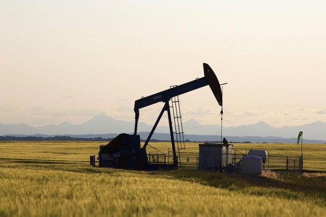 Les cours du pétrole évoluaient en ordre dispersé vendredi en fin d'échanges... (Photo archives Reuters)