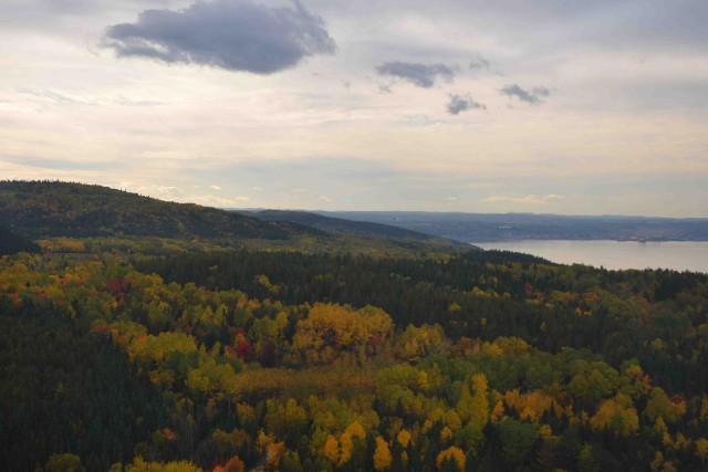 L'industrie forestière canadienne a la meilleure réputation au... ((Archives))