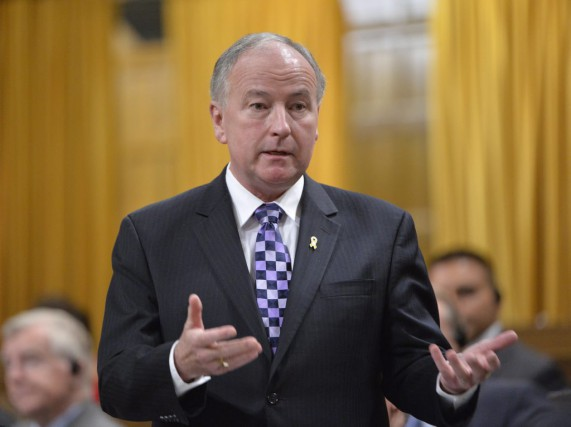 Le ministre de la Défense, Rob Nicholson... (PHOTO ADRIAN WYLD, ARCHIVES LA PRESSE CANADIENNE)