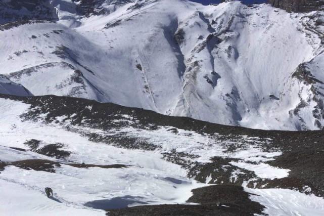 Des recherches sont en cours ces jours-ci sur le site de l'avalanche qui a... (PHOTO REUTERS)