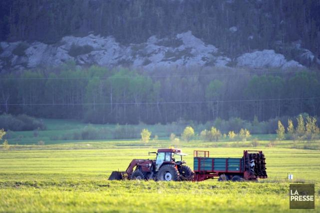Le phénomène de l'accaparement des terres est devenu... (Archives)