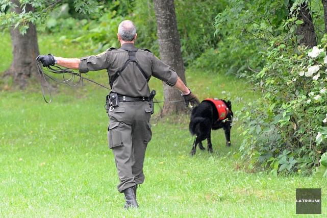 Un chasseur de 28 ans de Sherbrooke a été retrouvé sans vie lundi dans une... (Archives La Tribune)